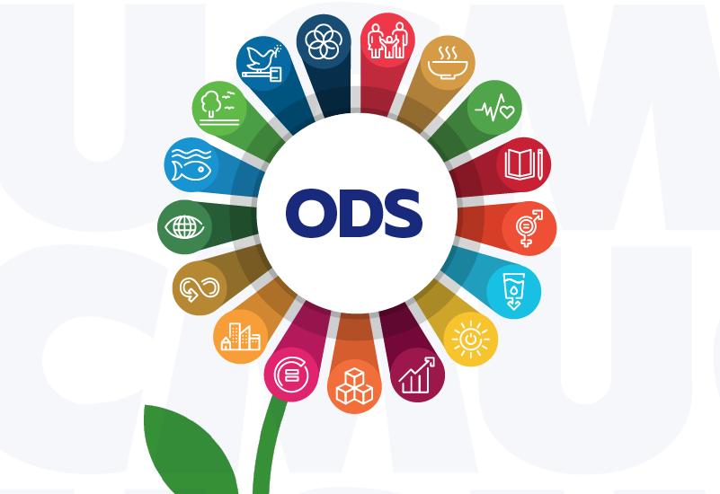 UCM por primera vez en su historia en Ranking Internacional Impact Rankings Sustainable Development Goals.